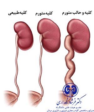 bozorgshodankoliye1